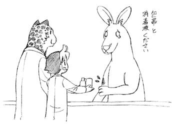 Kangaroo4